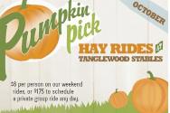 Pumpkin Pick Tanglewood