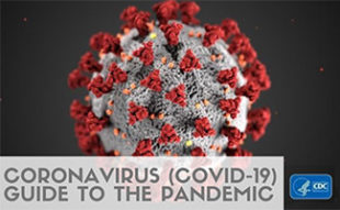 COVID-19 virus cell under electron microscope (caption: Coronavirus (COVID-19) Guide To The Pandemic)