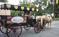 Camel City Carriage company co horse drawn