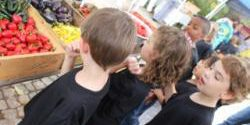 Cobblestone Farmers Market Kids