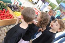 Cobblestone Farmers Market Local produce kids