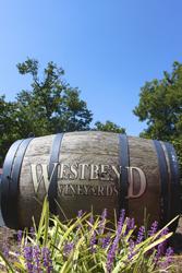 Westbend Vineyard Yadkin Valley Wine Country