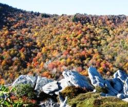 Blue Ridge Parkway Fall Foliage