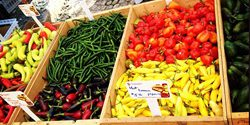 Winston-Salem Area Farmers Markets