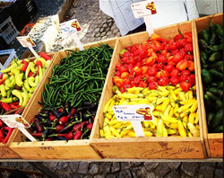cobblestone farmers market shore farm organics